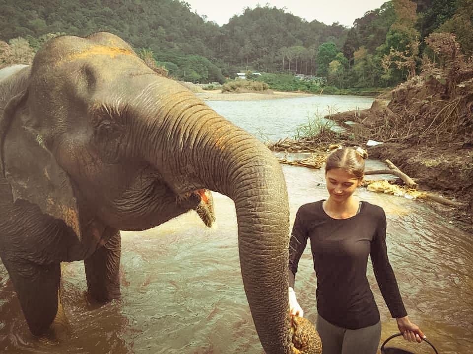 Aider les elephants dans un sanctuaire en Thailande - Free Spirit