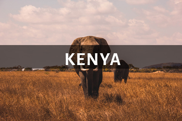 Inaudible Voices Kenya